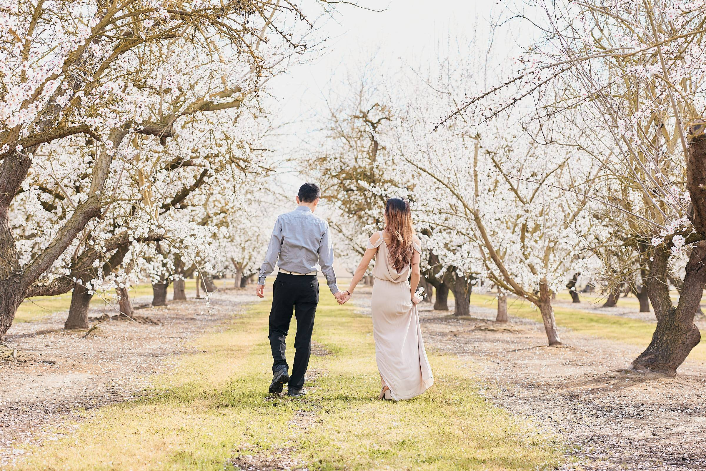 Almond Orchards Bay Area Couples Photos