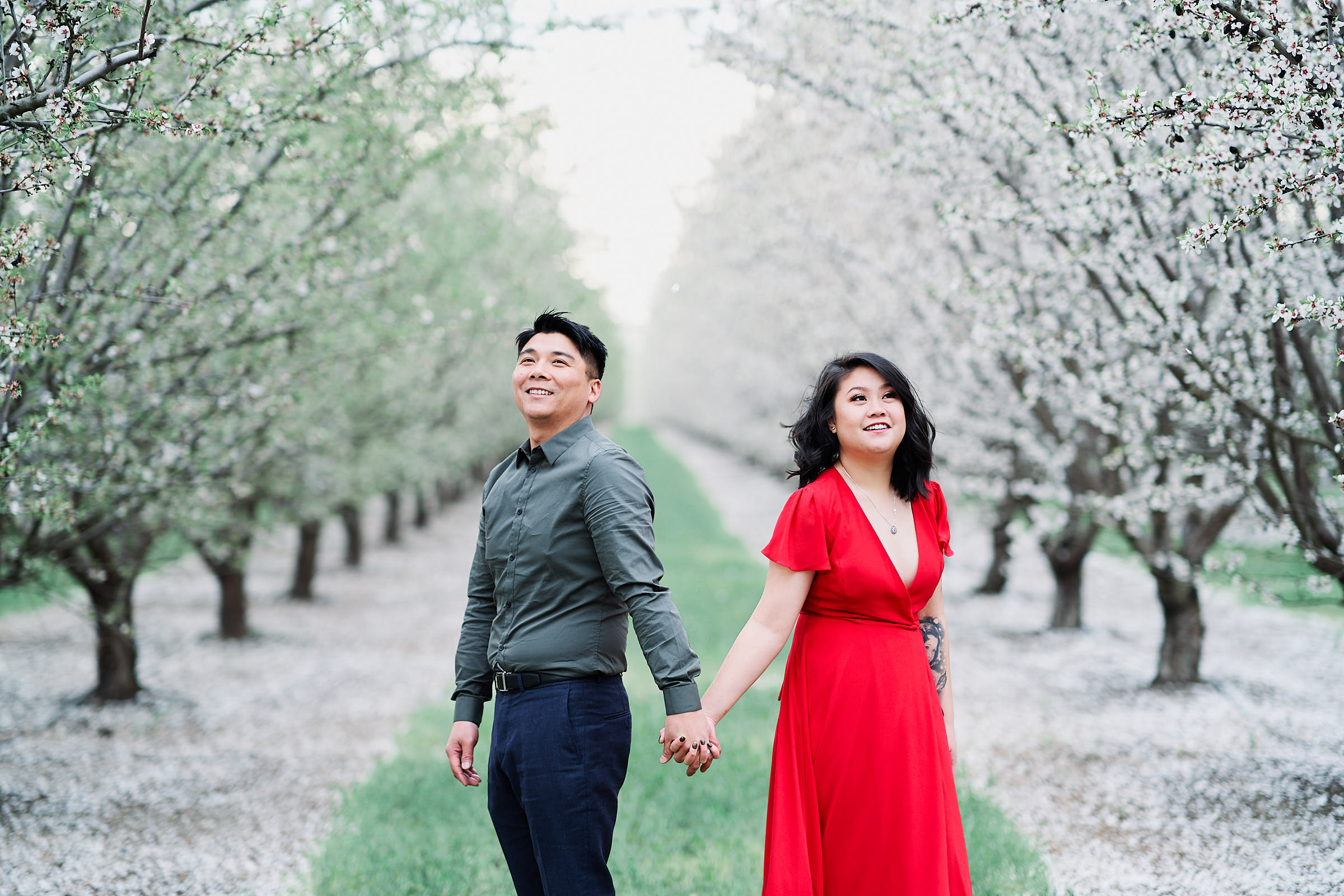 Dreamy Almond Orchards Spring Time Engagement Photos