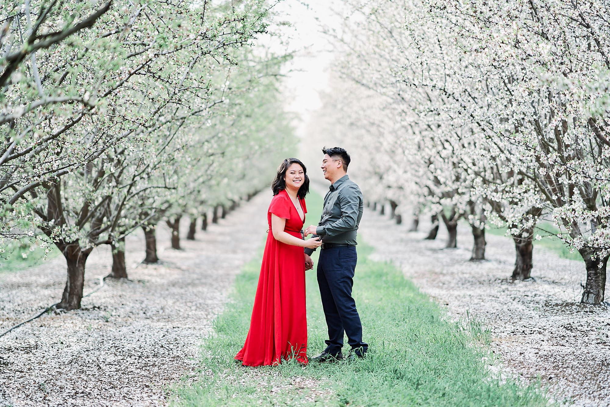 Asian Couples Photos At Almond Orchards California