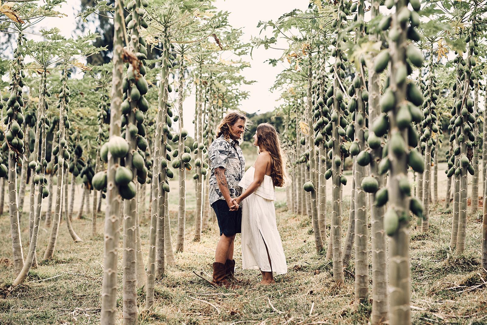 Kauai Farm Location For Photoshoot Timbers Resort