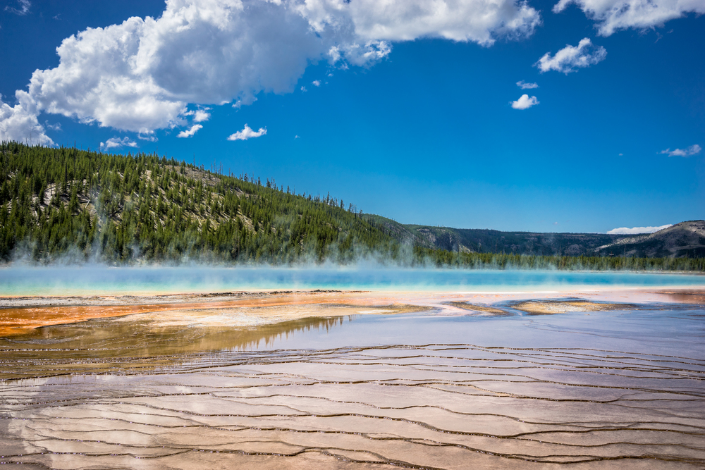 Yellowstone National Park Grand Prismatic Ground Level Picture Afewgoodclicks