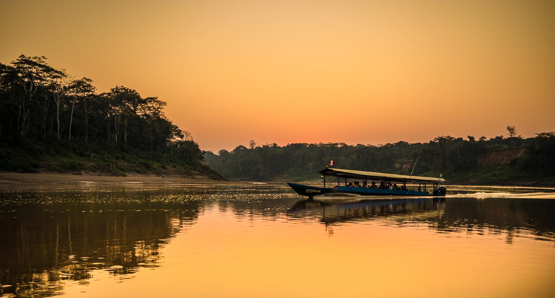 Tambopata River Amazon Forest Peru Travel Picture