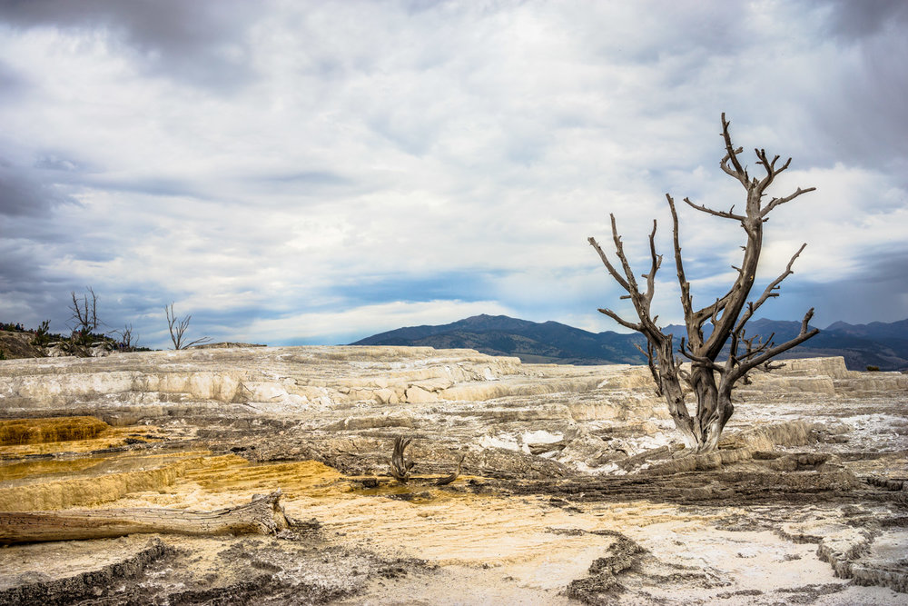 Mammoth Lake Yellow Stone National Park Usa Top Destination