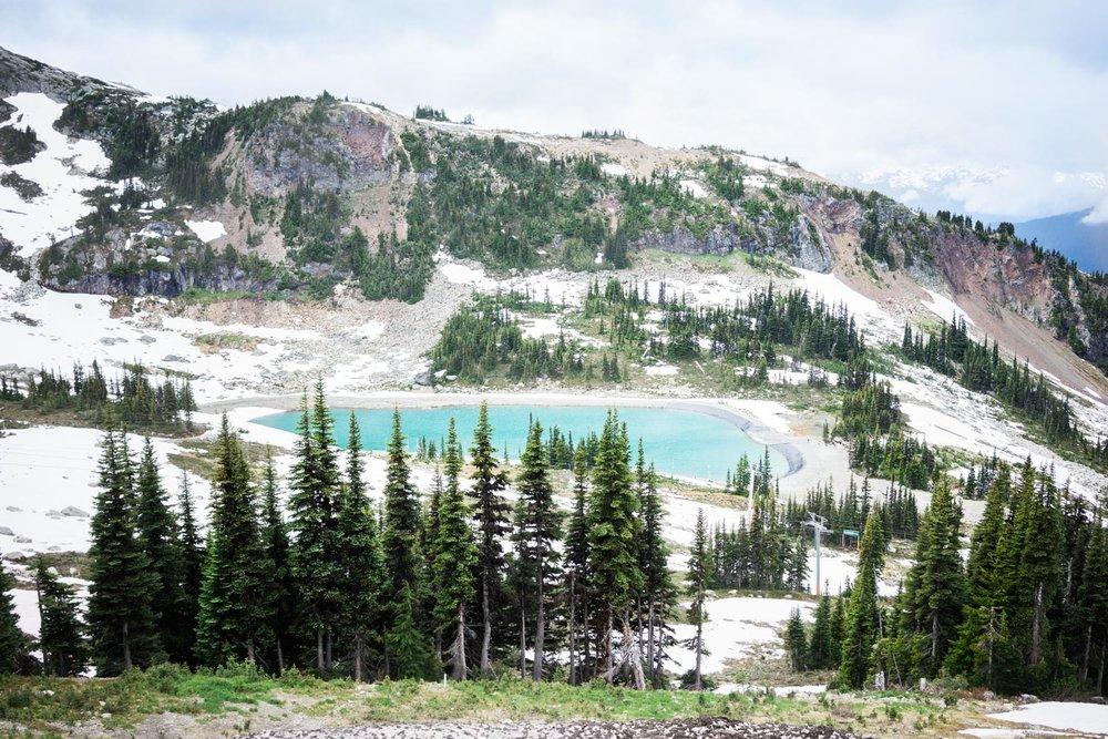 Top Of Whistler Mountain British Columbia Canada