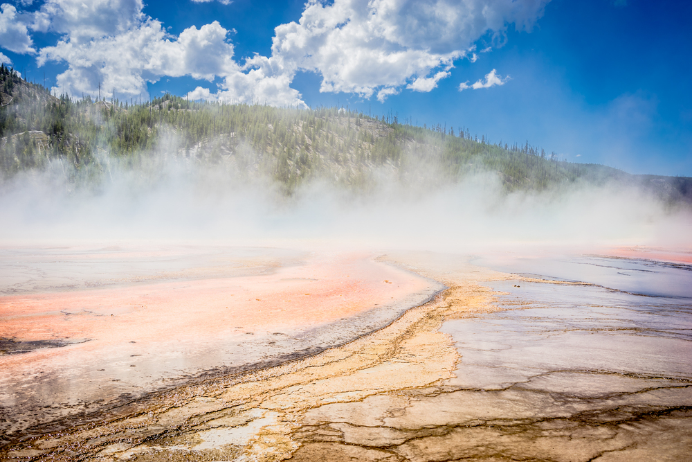 Steam Rising Over Hot Water Geysers In Yellowstone Park Usa
